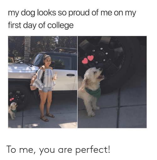perfect: To me, you are perfect!