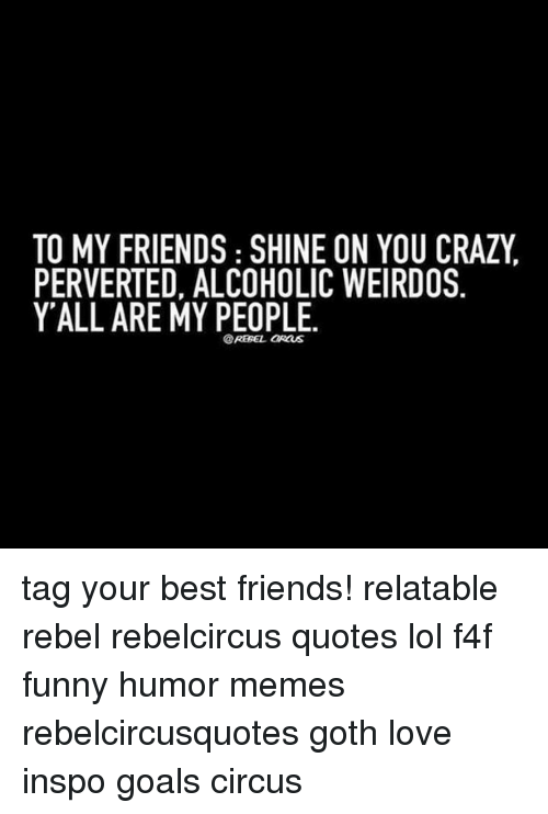 Memes, Goths, and 🤖: TO MY FRIENDS SHINE ON YOU CRAZY  PERVERTED, ALCOHOLIC WEIRDOS  Y ALL ARE MY PEOPLE.  @REBEL aRauS tag your best friends! relatable rebel rebelcircus quotes lol f4f funny humor memes rebelcircusquotes goth love inspo goals circus