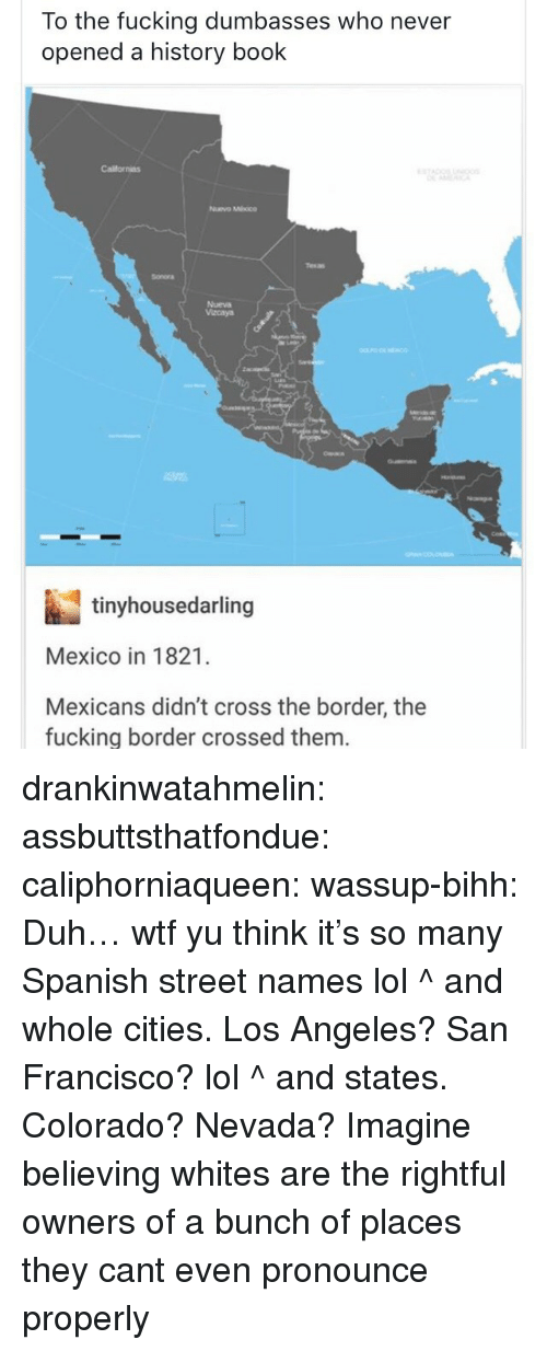 Fucking, Lol, and Spanish: To the fucking dumbasses who never  opened a history book  Californias  Nuvo Mhoco  Sonora  Nueva  Vacaya  tinyhousedarling  Mexico in 1821.  Mexicans didn't cross the border, the  fucking border crossed them drankinwatahmelin:  assbuttsthatfondue:  caliphorniaqueen:  wassup-bihh:  Duh… wtf yu think it's so many Spanish street names lol  ^ and whole cities. Los Angeles? San Francisco? lol  ^ and states. Colorado? Nevada?  Imagine believing whites are the rightful owners of a bunch of places they cant even pronounce properly