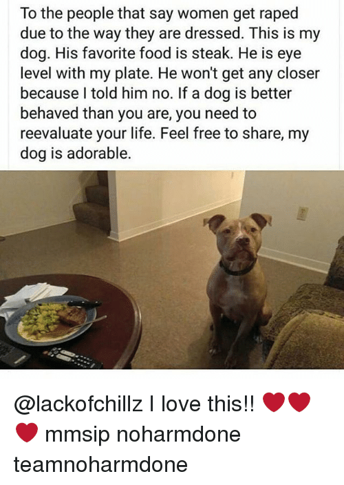 Closers: To the people that say women get raped  due to the way they are dressed. This is my  dog. His favorite food is steak. He is eye  level with my plate. He won't get any closer  because I told him no. If a dog is better  behaved than you are, you need to  reevaluate your life. Feel free to share, my  dog is adorable. @lackofchillz I love this!! ❤❤❤ mmsip noharmdone teamnoharmdone