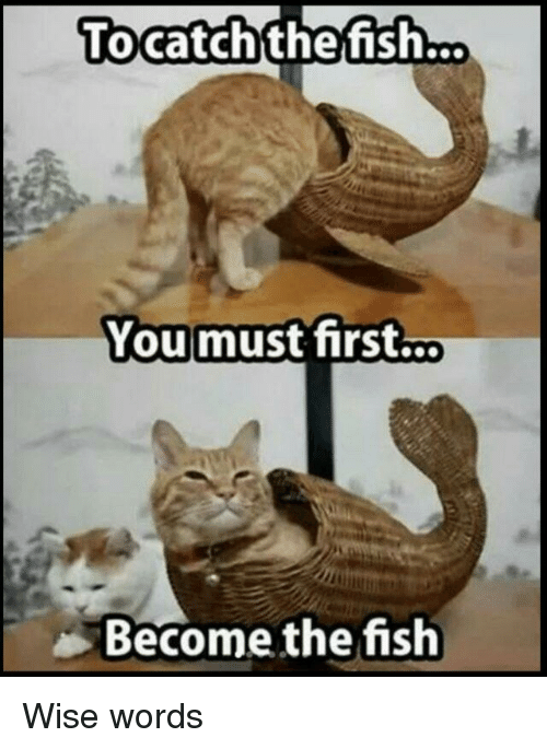 Wise Words: Tocatchthefish...  Youmust first...  Become the fish Wise words