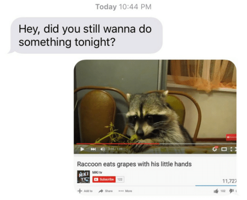 Wanna Do: Today 10:44 PM  Hey, did you still wanna do  something tonight?  4)  035 / 109  Raccoon eats grapes with his little hands  MKI tv  Subscribe  122  11,727  +Add to  → Share  102タ11  More