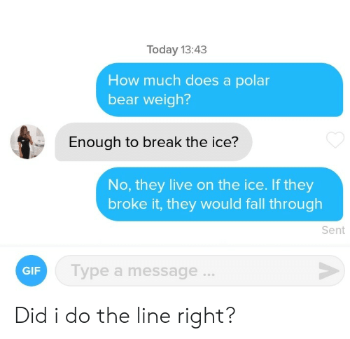 Fall, Gif, and Bear: Today 13:43  How much does a polar  bear weigh?  Enough to break the ice?  No, they live on the ice. If they  broke it, they would fall through  Sent  Type a message...  GIF Did i do the line right?