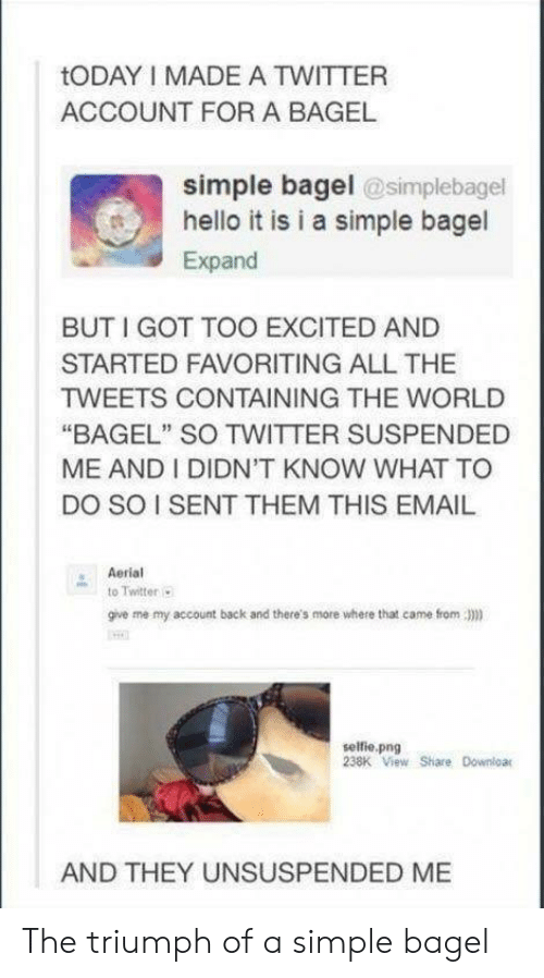 """Hello, Selfie, and Twitter: tODAY I MADE A TWITTER  ACCOUNT FOR A BAGEL  simple bagel @simplebagel  hello it is i a simple bagel  Expand  BUTI GOT TOO EXCITED AND  STARTED FAVORITING ALL THE  TWEETS CONTAINING THE WORLD  """"BAGEL"""" SO TWITTER SUSPENDED  ME AND I DIDN'T KNOW WHAT TO  DO SO I SENT THEM THIS EMAIL  Aerial  to Twitter  give me my account back and there's more where that came from)  selfie.png  238K View Share Downloar  AND THEY UNSUSPENDED ME The triumph of a simple bagel"""
