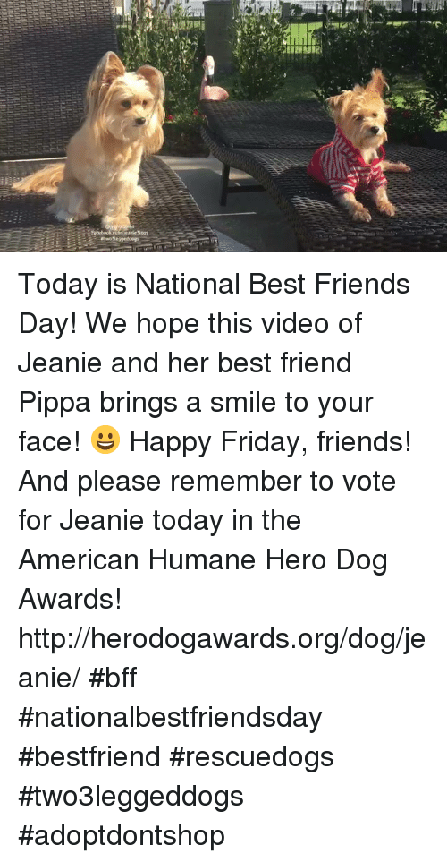 best friends day: Today is National Best Friends Day! We hope this video of Jeanie and her best friend Pippa brings a smile to your face! 😀 Happy Friday, friends!   And please remember to vote for Jeanie today in the American Humane Hero Dog Awards!  http://herodogawards.org/dog/jeanie/  #bff #nationalbestfriendsday #bestfriend #rescuedogs #two3leggeddogs #adoptdontshop