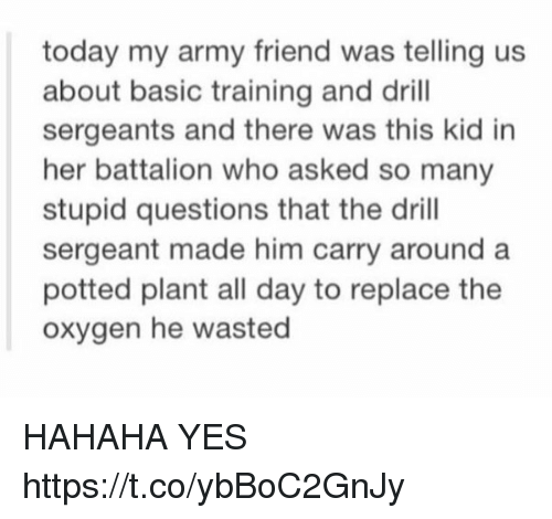 Basic Training: today my army friend was telling us  about basic training and drill  sergeants and there was this kid in  her battalion who asked so many  stupid questions that the drill  sergeant made him carry around a  potted plant all day to replace the  oxygen he wasted HAHAHA YES https://t.co/ybBoC2GnJy