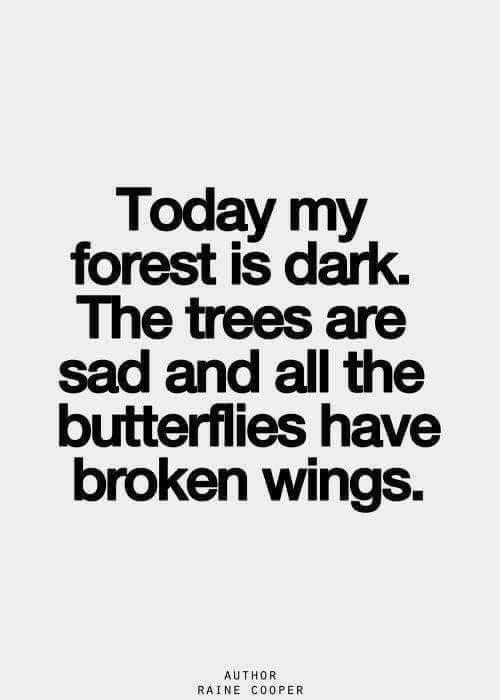 Today, Trees, and Wings: Today my  forest is dark.  The trees are  sad and all the  butterflies have  broken wings  AUTHOR  RAINE CoOPER
