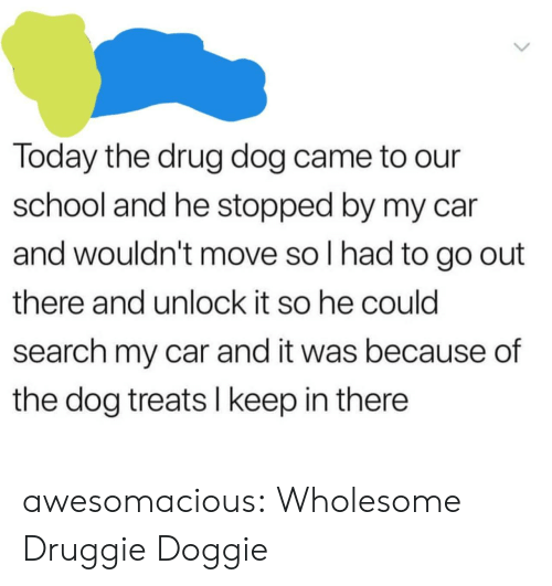 Doggie: Today the drug dog came to our  school and he stopped by my car  and wouldn't move so I had to go out  there and unlock it so he could  search my car and it was because of  the dog treats I keep in there awesomacious:  Wholesome Druggie Doggie