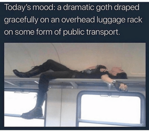 transport: Today's mood: a dramatic goth draped  gracefully on an overhead luggage rack  on some form of public transport.