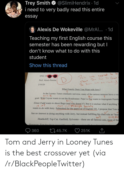 tunes: Tom and Jerry in Looney Tunes is the best crossover yet (via /r/BlackPeopleTwitter)