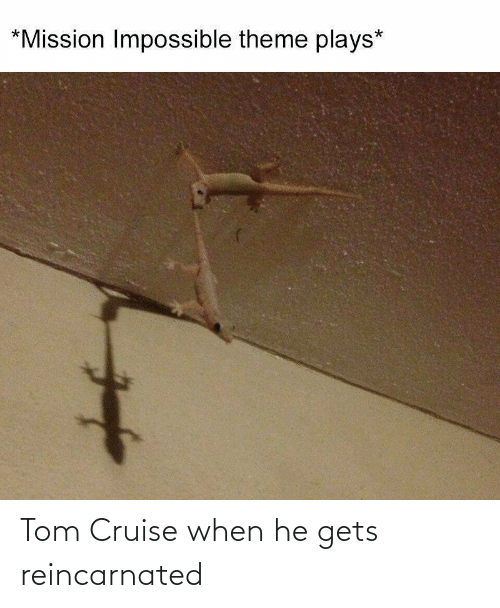 Cruise: Tom Cruise when he gets reincarnated