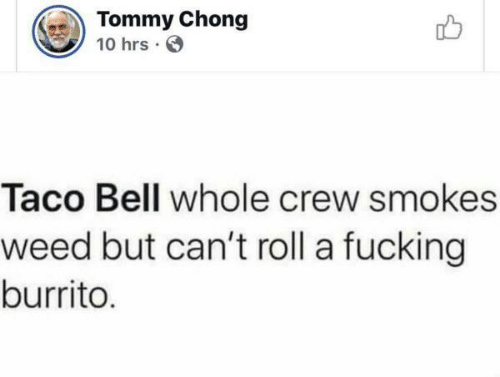 Taco Bell: Tommy Chong  10 hrs  Taco Bell whole crew smokes  weed but can't roll a fucking  burrito.