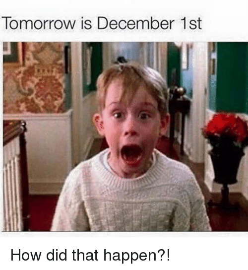 tomorrow is december 1st how did that happen 7740247 ✅ 25 best memes about december 1st december 1st memes