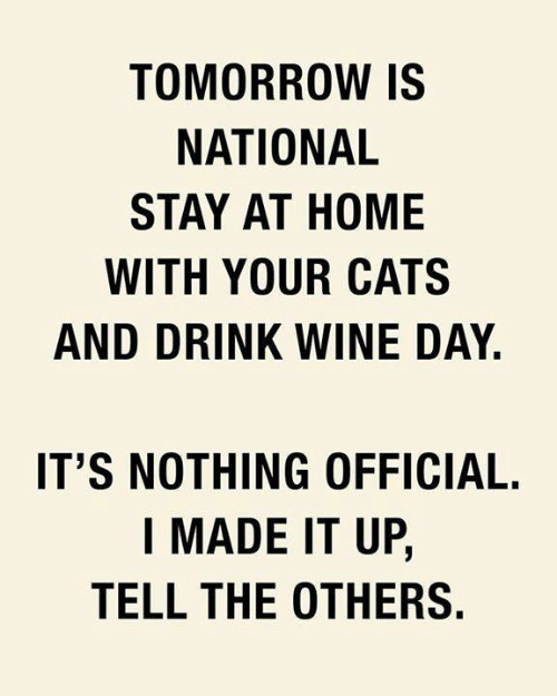 Cats, Memes, and Wine: TOMORROW IS  NATIONAL  STAY AT HOME  WITH YOUR CATS  AND DRINK WINE DAY.  IT'S NOTHING OFFICIAL.  I MADE IT UP,  TELL THE OTHERS.