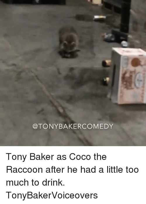 The Raccoons: @TONY BAKER COMEDY Tony Baker as Coco the Raccoon after he had a little too much to drink. TonyBakerVoiceovers