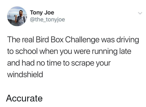Running Late: Tony Joe  @the_tonyjoe  The real Bird Box Challenge was driving  to school when you were running late  and had no time to scrape your  windshield Accurate