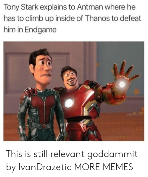 Dank, Memes, and Target: Tony Stark explains to Antman where he  has to climb up inside of Thanos to defeat  him in Endgame This is still relevant goddammit by IvanDrazetic MORE MEMES