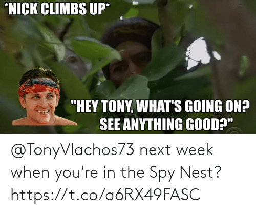 Nest: @TonyVlachos73 next week when you're in the Spy Nest? https://t.co/a6RX49FASC