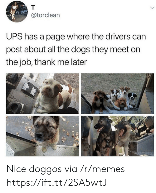 Dogs, Memes, and Ups: @torclean  UPS has a page where the drivers can  post about all the dogs they meet on  the job, thank me later Nice doggos via /r/memes https://ift.tt/2SA5wtJ