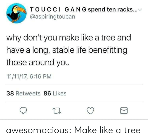 racks: TOUCCI GAN G spend ten racks...V  @aspiringtoucan  why don't you make like a tree and  have a long, stable life benefitting  those around you  11/11/17, 6:16 PM  38 Retweets 86 Likes awesomacious:  Make like a tree