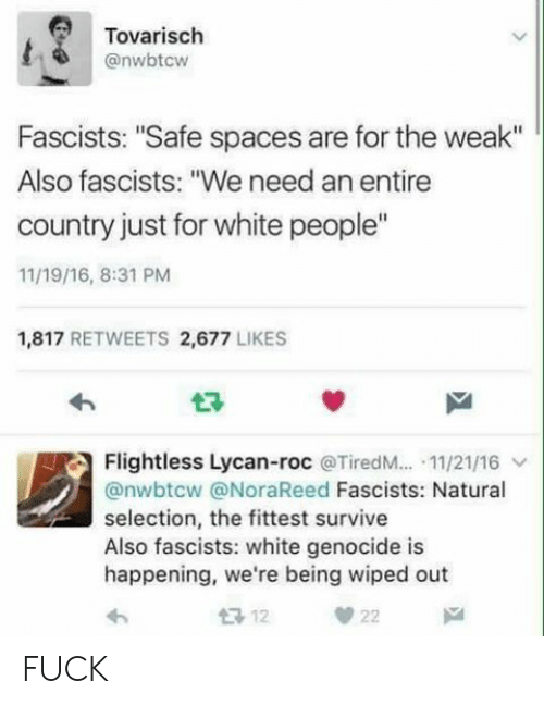 """White Genocide: Tovarisch  @nwbtcw  Fascists: """"Safe spaces are for the weak""""  Also fascists: """"We need an entire  country just for white people""""  11/19/16, 8:31 PM  1,817 RETWEETS 2,677 LIKES  Flightless Lycan-roc @TiredM...-11/21/16 ﹀  @nwbtcw @NoraReed Fascists: Natural  selection, the fittest survive  Also fascists: white genocide is  happening, we're being wiped out FUCK"""