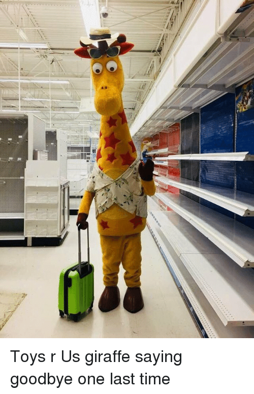Toys R Us, Giraffe, and Time