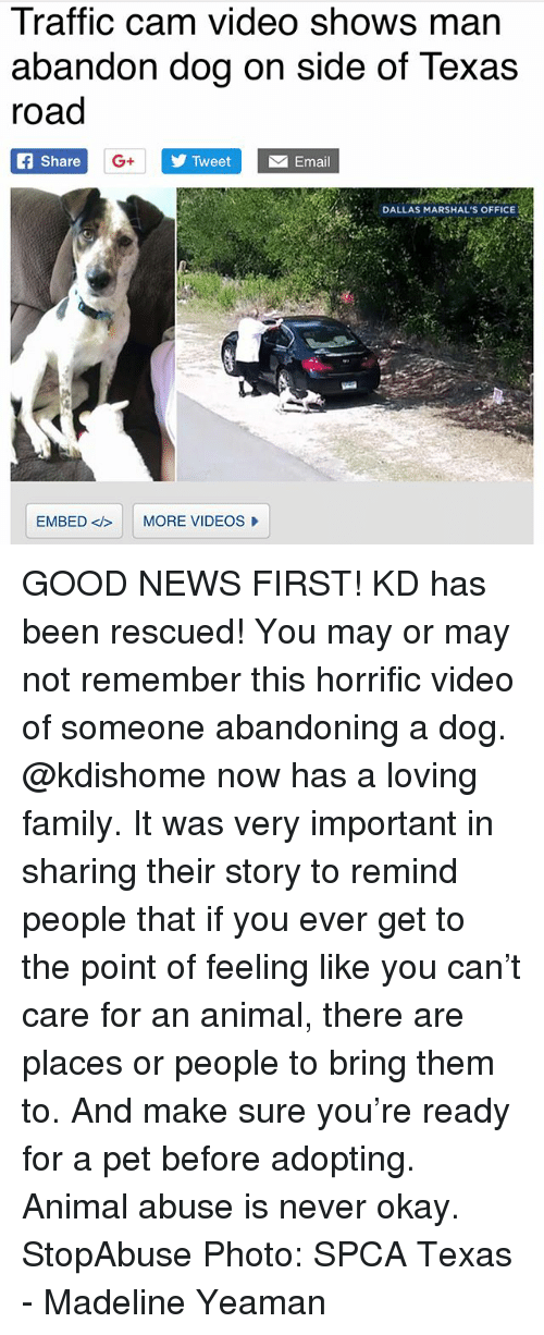 Animal Abuse: Traffic cam video shows man  abandon dog on side of Texas  road  Share  G+  Tweet  Email  IEDALLAS MARSHAL'S OFFICE  EMBED <b> |  MORE VIDEOS GOOD NEWS FIRST! KD has been rescued! You may or may not remember this horrific video of someone abandoning a dog. @kdishome now has a loving family. It was very important in sharing their story to remind people that if you ever get to the point of feeling like you can't care for an animal, there are places or people to bring them to. And make sure you're ready for a pet before adopting. Animal abuse is never okay. StopAbuse Photo: SPCA Texas - Madeline Yeaman