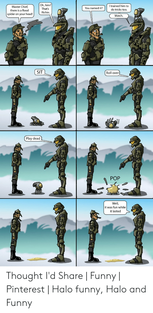 Funny, Halo, and Head: trained him to  do tricks too.  Oh, him?  That's  Master Chief  You named it?  there is a flood  Richie.  spider on your head!  Watch.  SIT  Roll over  Play dead  POP  요  Well,  it was fun while  it lasted Thought I'd Share | Funny | Pinterest | Halo funny, Halo and Funny