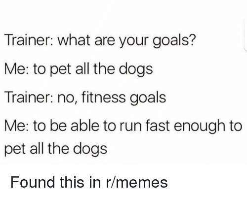 Dogs, Goals, and Memes: Trainer: what are your goals?  Me: to pet all the dogs  Trainer: no, fitness goals  Me: to be able to run fast enough to  pet all the dogs <p>Found this in r/memes</p>
