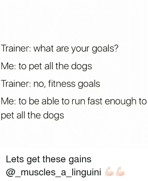 Dogs, Funny, and Goals: Trainer: what are your goals?  Me: to pet all the dogs  Trainer: no, fitness goals  Me: to be able to run fast enough to  pet all the dogs Lets get these gains @_muscles_a_linguini 💪🏻💪🏻