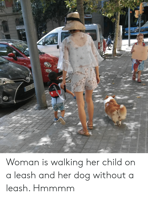 Her, Dog, and Woman: TRANSFELI Woman is walking her child on a leash and her dog without a leash. Hmmmm