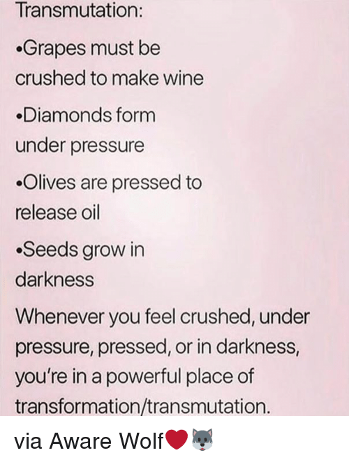 Olives: Transmutation:  Grapes must be  crushed to make wine  Diamonds form  under pressure  .Olives are pressed to  release oil  .Seeds grow in  darkness  Whenever you feel crushed, under  pressure, pressed, or in darkness,  you're in a powerful place of  transformation/transmutation. via Aware Wolf❤️🐺