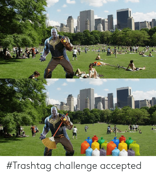 Dank, Accepted, and 🤖: #Trashtag challenge accepted