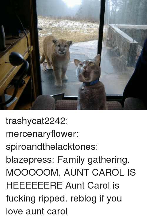 Family, Fucking, and Love: trashycat2242: mercenaryflower:  spiroandthelacktones:  blazepress:  Family gathering.  MOOOOOM, AUNT CAROL IS HEEEEEERE  Aunt Carol is fucking ripped.   reblog if you love aunt carol