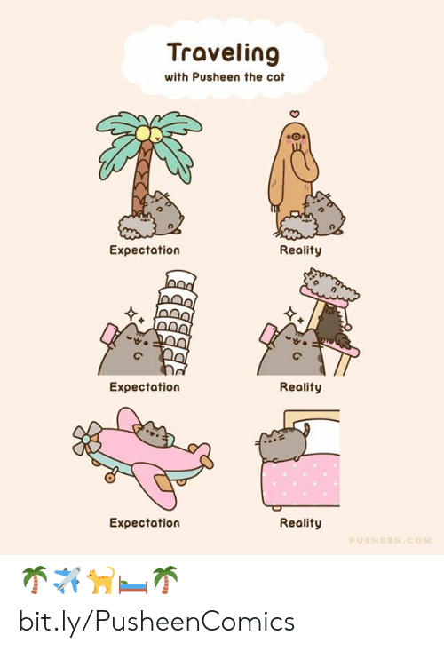 traveling: Traveling  with Pusheen the cat  Expectation  Reality  Eχpectation  Reality  Expectation  Reality  PUSHEEN.COM 🌴✈️🐈🛏️🌴 bit.ly/PusheenComics