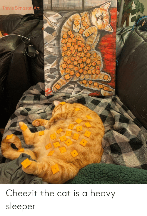Art, Cat, and Simpson: Travis Simpson Art Cheezit the cat is a heavy sleeper