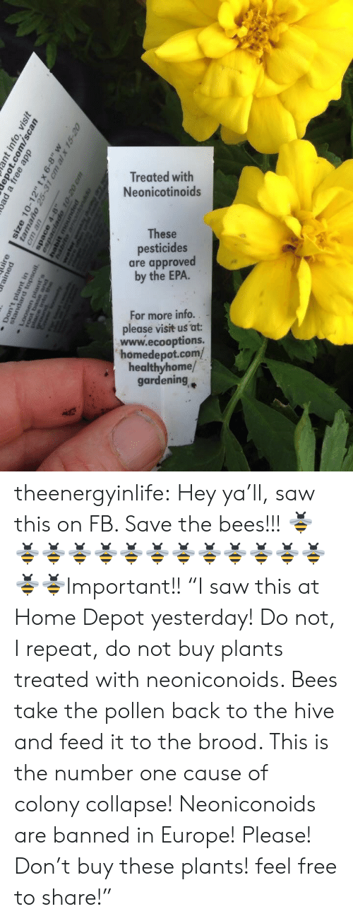 """Depot: Treated with  Neonicotinoids  These  pesticides  are approved  by the EPA.  For more info..  please visit us at:  www.ecooptions.  homedepot.com/  healthyhome/  gardening theenergyinlife: Hey ya'll, saw this on FB. Save the bees!!! 🐝🐝🐝🐝🐝🐝🐝🐝🐝🐝🐝🐝🐝🐝🐝Important!! """"I saw this at Home Depot yesterday! Do not, I repeat, do not buy plants treated with neoniconoids. Bees take the pollen back to the hive and feed it to the brood.  This is the number one cause of colony collapse! Neoniconoids are banned in Europe! Please! Don't buy these plants! feel free to share!"""""""