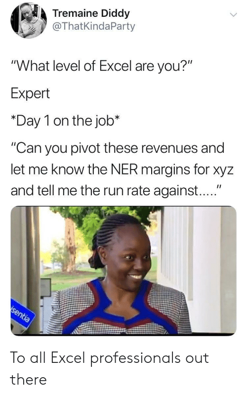 """xyz: Tremaine Diddy  @ThatKindaParty  """"What level of Excel are you?""""  Expert  *Day 1 on the job*  """"Can you pivot these revenues and  let me know the NER margins for xyz  and tell me the run rate against...."""" To all Excel professionals out there"""