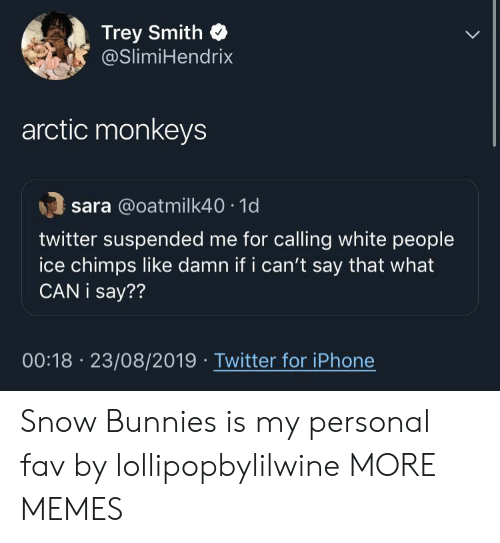 what can i say: Trey Smith  @SlimiHendrix  arctic monkeys  sara @oatmilk40 1d  twitter suspended me for calling white people  ice chimps like damn if i can't say that what  CAN i say??  00:18 23/08/2019 Twitter for iPhone Snow Bunnies is my personal fav by lollipopbylilwine MORE MEMES