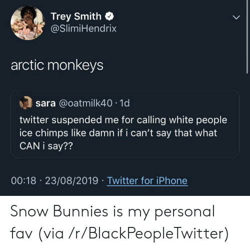 what can i say: Trey Smith  @SlimiHendrix  arctic monkeys  sara @oatmilk40 1d  twitter suspended me for calling white people  ice chimps like damn if i can't say that what  CAN i say??  00:18 23/08/2019 Twitter for iPhone Snow Bunnies is my personal fav (via /r/BlackPeopleTwitter)