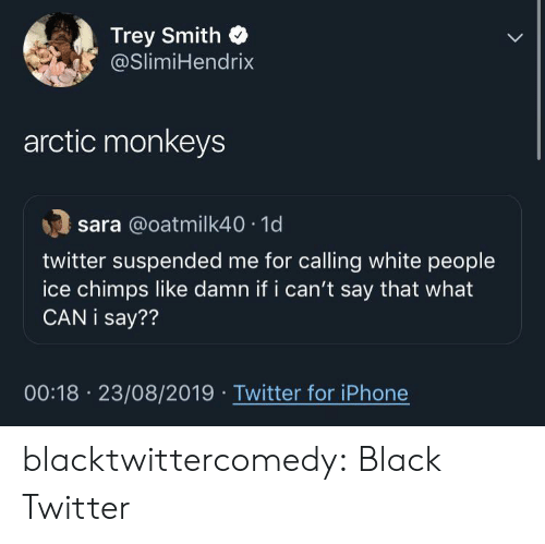 what can i say: Trey Smith  @SlimiHendrix  arctic monkeys  sara @oatmilk40 1d  twitter suspended me for calling white people  ice chimps like damn if i can't say that what  CAN i say??  00:18 23/08/2019 Twitter for iPhone blacktwittercomedy:  Black Twitter