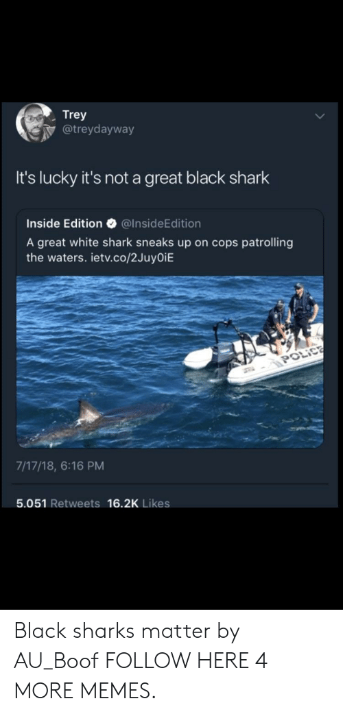 Dank, Memes, and Target: Trey  @treydayway  It's lucky it's not a great black shark  Inside Edition @InsideEdition  A great white shark sneaks up on cops patrolling  the waters. ietv.co/2JuyOiE  7/17/18, 6:16 PM  5.051 Retweets 16.2K Likes Black sharks matter by AU_Boof FOLLOW HERE 4 MORE MEMES.