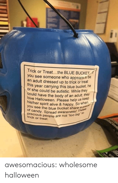 "See Someone: Trick or Treat...the BLUE BUCKET  you see someone who appears be  an adult dressed up to trick or treat  year carrying this blue bucket, he  this  or she could be autistic. While they  love Halloween. Please help us keep  his/her spirit alive & happy. So when  could have the body of an adult, they  you see the blue bucket share a plece  of candy. Spread awareness! These  precious people are not ""too big to  HE  trick or treat.  ARRA  WAR awesomacious:  wholesome halloween"
