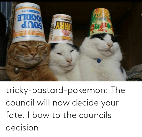 Will Now: tricky-bastard-pokemon:  The council will now decide your fate.   I bow to the councils decision