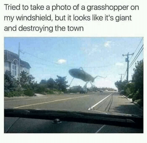 Giant, The Town, and Grasshopper: Tried to take a photo of a grasshopper on  my windshield, but it looks like it's giant  and destroying the town