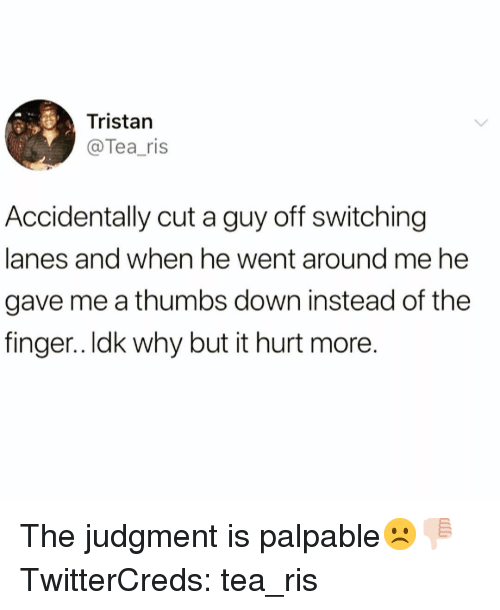 palpable: Tristan  @Tea_ris  Accidentally cut a guy off switching  lanes and when he went around me he  gave me a thumbs down instead of the  finger.. Idk why but it hurt more The judgment is palpable☹️👎🏻 TwitterCreds: tea_ris