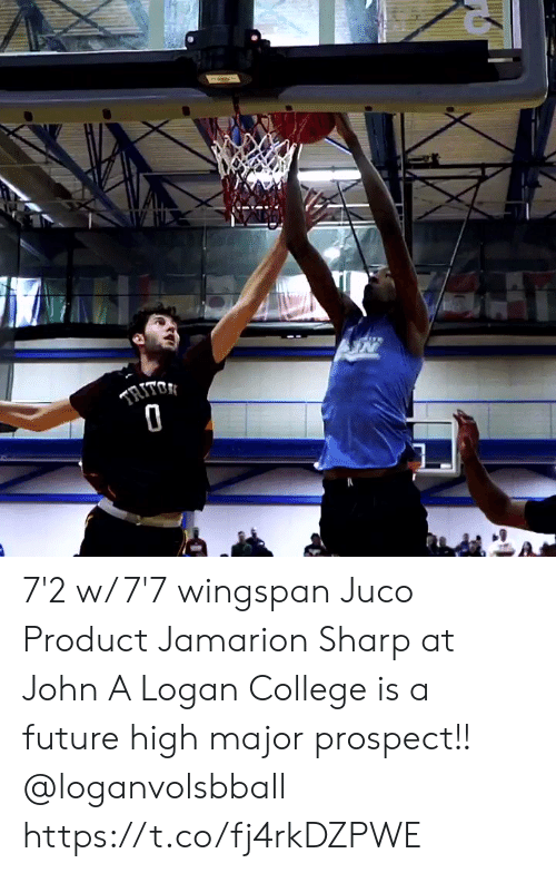sharp: TRITO 7'2 w/ 7'7 wingspan Juco Product Jamarion Sharp at John A Logan College is a future high major prospect!! @loganvolsbball https://t.co/fj4rkDZPWE