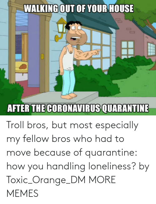 How You: Troll bros, but most especially my fellow bros who had to move because of quarantine: how you handling loneliness? by Toxic_Orange_DM MORE MEMES