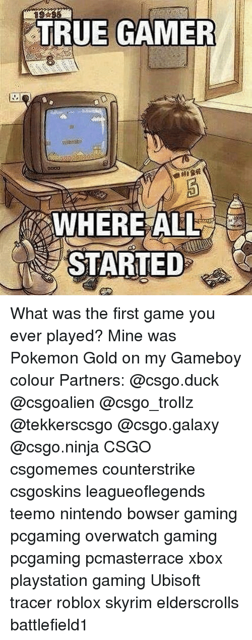 gameboys: TRUE GAMER  WHEREALL  STARTED What was the first game you ever played? Mine was Pokemon Gold on my Gameboy colour Partners: @csgo.duck @csgoalien @csgo_trollz @tekkerscsgo @csgo.galaxy @csgo.ninja CSGO csgomemes counterstrike csgoskins leagueoflegends teemo nintendo bowser gaming pcgaming overwatch gaming pcgaming pcmasterrace xbox playstation gaming Ubisoft tracer roblox skyrim elderscrolls battlefield1