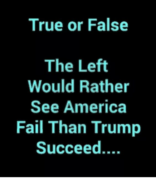 America, Fail, and Memes: True or False  The Left  Would Rather  See America  Fail Than Trump  Succeed....